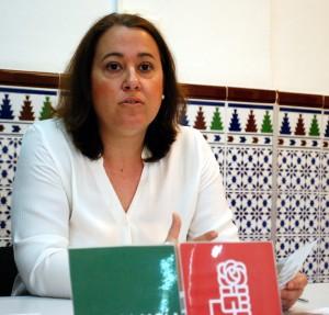 Arrinconados Encarnación Anaya PSOE