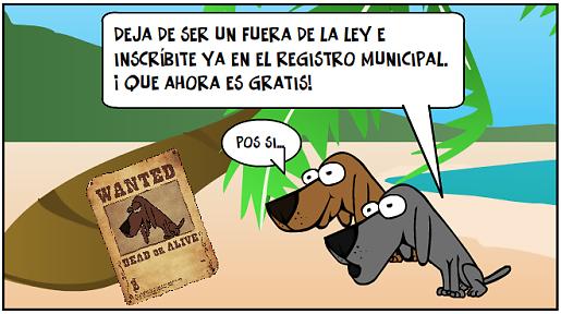 Arrinconados Registro Perros