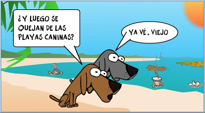 Arrinconados Playas Rincón