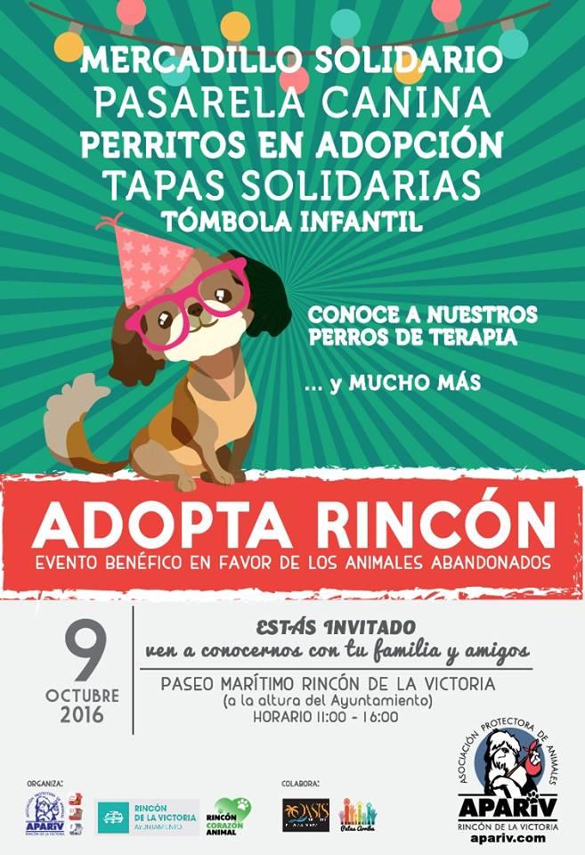 Arrinconados Adopta Rincon